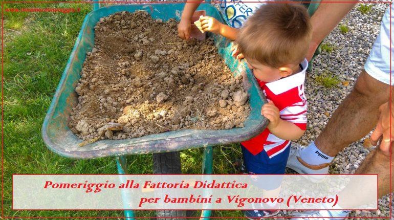 Innamorati in Viaggio in Fattoria didattica a Vigonovo