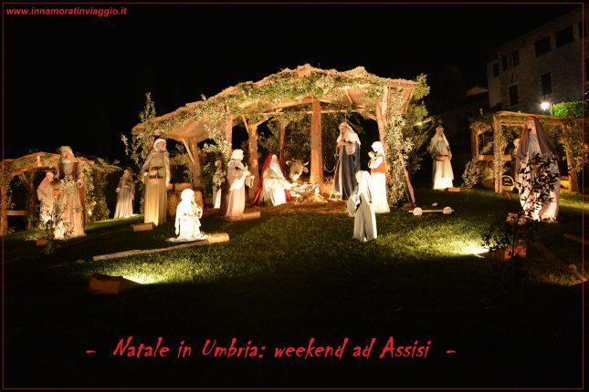 Copertina Assisi, Innamorati in viaggio