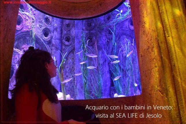 SEA LIFE Jesolo, copertina, Innamorati in Viaggio